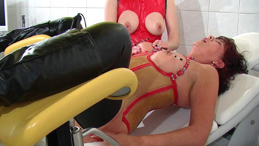 Horny nipples clamps skewers soft to hard